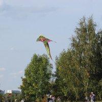 В небе воздушный змей :: Татьяна Иванова
