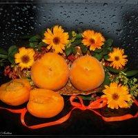 Оранжевая гамма :: °•●Елена●•° ♀