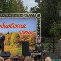 Рубцовская осень :: Наталья Кузнецова