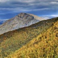 осень в горах Будьявр :: Георгий