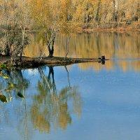 Где-то на краю земли, или дзен рыбака :: Екатерина Торганская