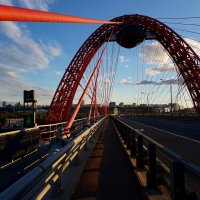 Живописный мост. Москва. :: Ольга Русанова (olg-rusanowa2010)