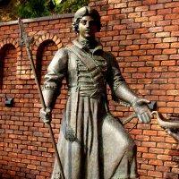 Памятник Петру I в Ростове (фрагмент) :: Нина Бутко