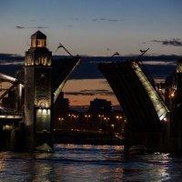 Ночные мосты Петербурга :: Инга Энгель