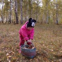 В осеннем лесу... :: Светлана Рябова-Шатунова