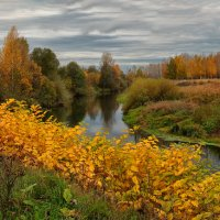 Осень :: Владимир Шамота