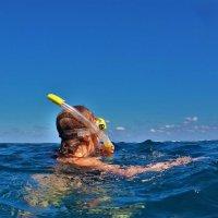 В ласковом тёплом море... :: Sergey Gordoff