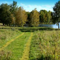 Тропинки к озеру :: Нэля Лысенко