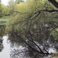 Пейзаж деревенского пруда :: Nikolay Monahov