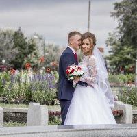 Свадебный день :: Рина Вишня