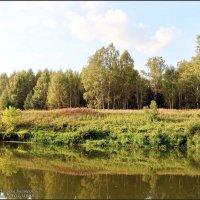 Гаврилов-Ямский район - это ОН.... :: Владимир ( Vovan50Nestor )