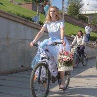 Леди на велосипеде :: Дмитрий Сиялов