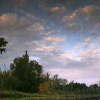 Осенних красок отраженья,восторг безудержный пленит... :: Евгений Юрков