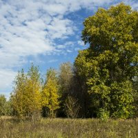 И осень тихими шагами в права вступает,листьями шурша... :: ТатьянА А...