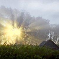 Солнечный взрыв :: Валерий Талашов