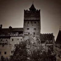 Замок Дракулы :: Nina Streapan