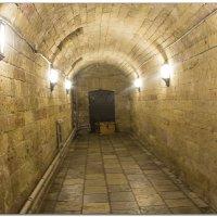 Подземелья Большого Гатчинского дворца :: Рамиль Хамзин