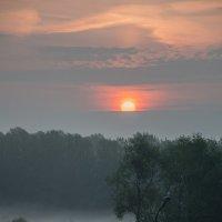 Рассвет в Тумане :: Макс Беккер