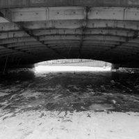 Февраль. Фонтанка. Аничков мост. :: AleksSPb