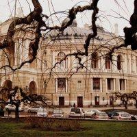 Одесса. Оперный театр :: Евгения Х