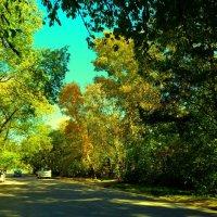Тихий переулок :: Милла Корн