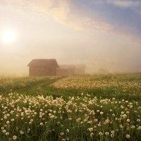 Вот и солнце встает :: Валерий Талашов