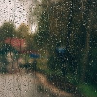 Капли дождя :: Alexander Royvels