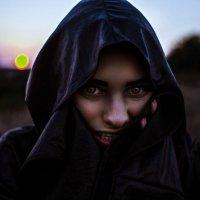 Ladyhawke :: Виталий Шевченко