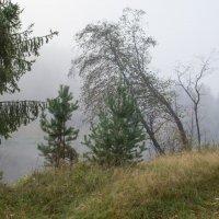 раннее осеннее утро на реке Тагил :: Александр Катаев