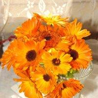 Ах,веселые цветы под названием ноготки! :: нина