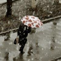 Давайте купим яркие зонты! Осенний дождь такой бывает нудный..... :: Сергей l