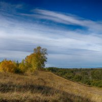 Осень :: Вера Сафонова