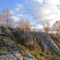 Северная природа.. :: emaslenova