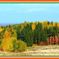Осенний пейзаж :: Владимир Перваков