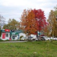 Осень в Байкальске :: Валентин Когун