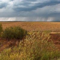 А где то там идут дожди.. :: Вера Лучникова