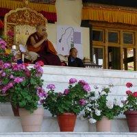 Далай Лама в монастыре Тикси :: Evgeni Pa
