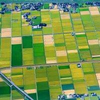 Пролетая над Японией :: Slava Hamamoto