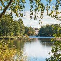 Уголок старого парка (9) :: Виталий
