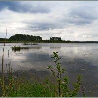 Забытое озеро.. :: Vladimir Semenchukov