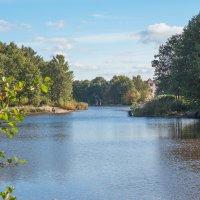 Уголок старого парка (10) :: Виталий