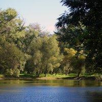 Осенний этюд. :: barsuk lesnoi