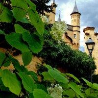 Название замка Хоэншвангау дословно переводится как «высокий лебединый край» :: backareva.irina Бакарева