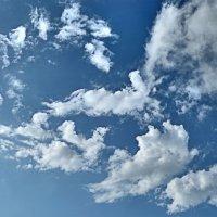 Зоосад на небесах :: Валерий Дворников