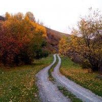 Дорога в осень :: Кристина Воробьева