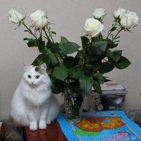 Лучший твой подарочек - это я! :: Наталья Стальмакова