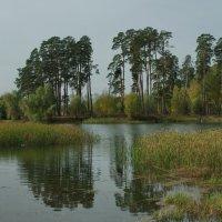 У озера :: * vivat.b *