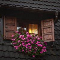 Ночь :: Lidiya Dmitrieva
