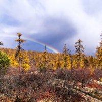 Осень и радуга. :: Юрий Харченко