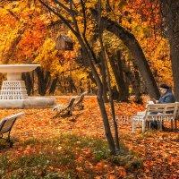 В Нескучном саду :: Юлия Батурина